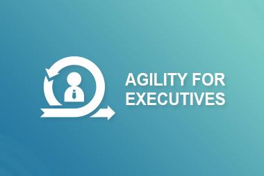 Agility for Executives
